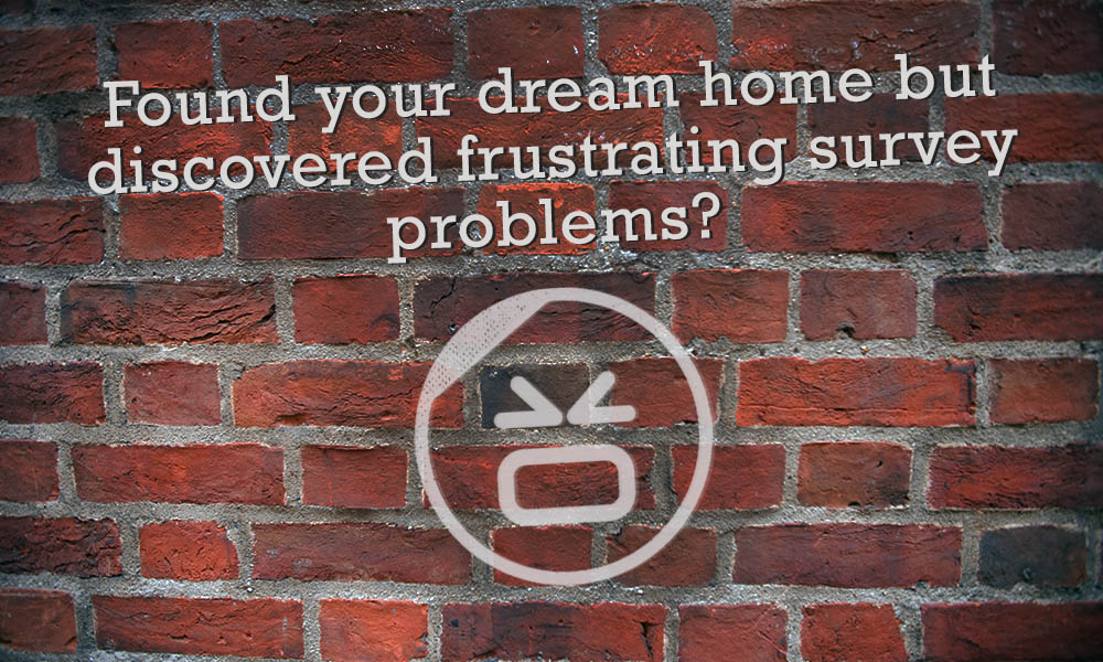 If you've found your dream home, the last thing you want is a survey that reveals problems. However, this doesn't mean that your purchase can't go ahead. Usually, a solution can be found.